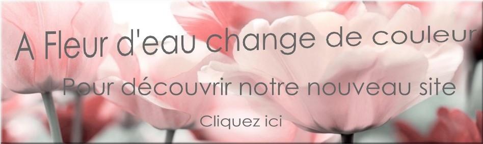 224b7e75a2ae8 Fleuriste A FLEUR D EAU livraison fleurs à NOISIEL 77